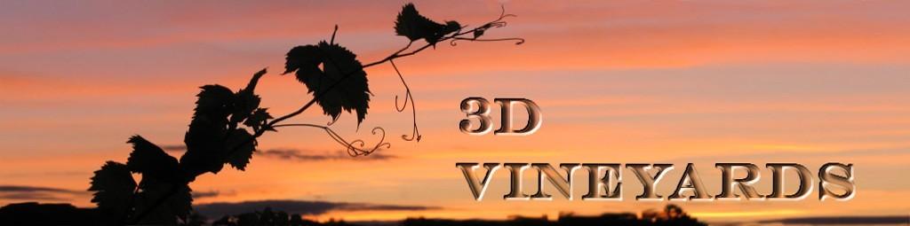 3D Vineyards